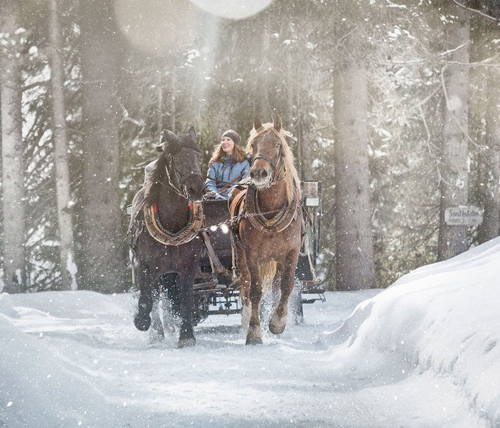 Sleigh ride through the forest